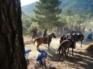 Τα άλογα που αγαπούσε ο Φώτης